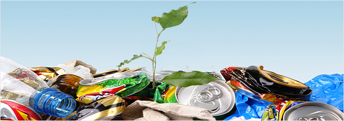 Solid Waste Management and dispose